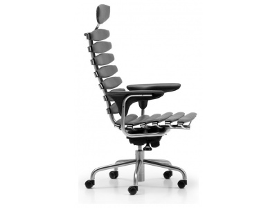 DS-2100 Skeleton Chair