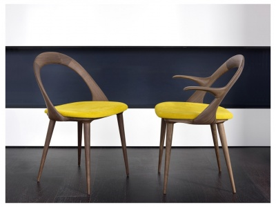 Ester Dining Chair With Arms