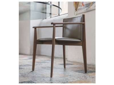 Ionis Dining Chair With Arms